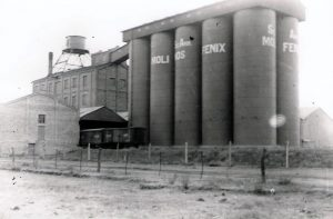 Molino Fénix - Historia